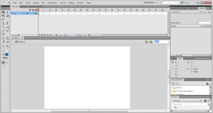 worksheet Adobe Flash CS 5